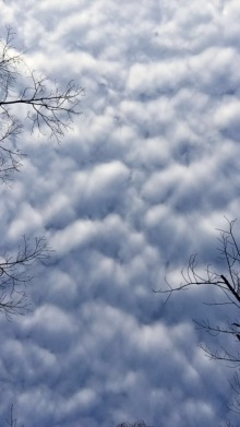 "3-CLOUDS by Karissa Jones. ""The clouds were taking over the sky on a bright morning before school."""